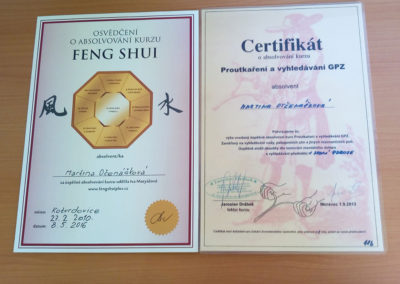 Feng Shui 001